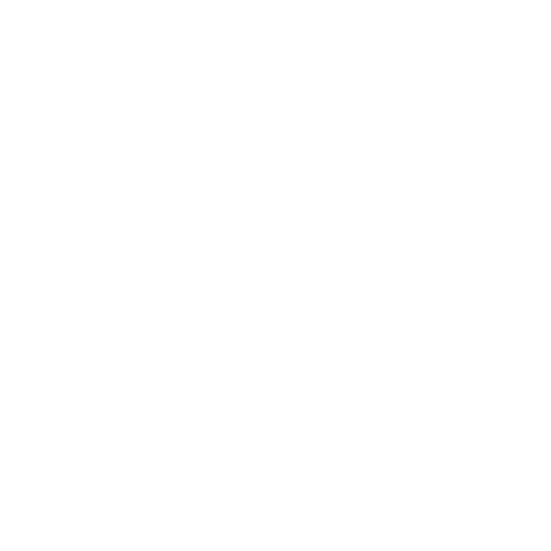 Red Van Creative Beaches of Texas Logo Design in Houston and the Woodlands, TX