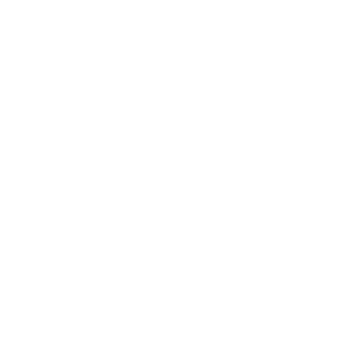Live Vibe by Ridge and Company Social media and Website